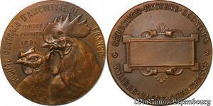 S2513 Médaille Société Centrale d'Aviculture France Fondée FévrI 1891