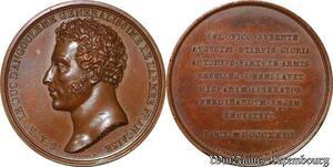 S3261 Rare Médaille Louis Antoine Duc Angoulême 1775-1844. De Puymaurin 1823