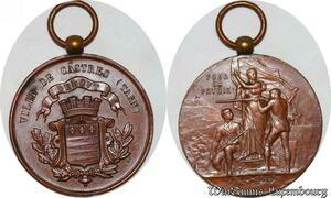 S3336 Médaille Ville De Castres Tarn Pour La Patrie - Faire Offre