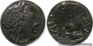 S3645 Grecque Greek Grappe de Raisin -> Faire Offre