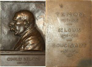 P0466 Rare Plaque Charles Nélaton Docteur Médecine 1911 Saint Louis SUP