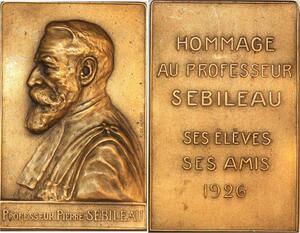 P0472  Rare Plaque De Herain Pr Pierre Sebilleau Médecin Chirurgien 1926 SUP