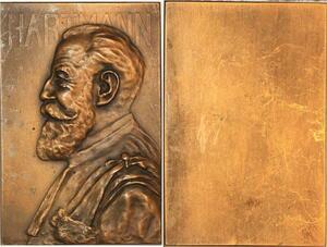 P0478  Rare Plaque Médecine Henri Hartmann Médecin Chirurgien De Herain SUP