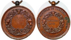 P1768 Médaille Comice Agricole Briey Meurthe et Moselle Taurillons 1er Prix