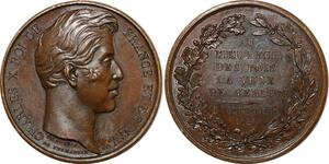 P2732 Médaille Charles X Visite Verdun 1828 Dubois Desnoyers SPL